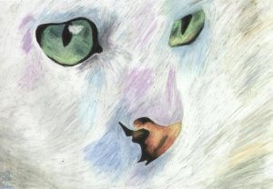 Sad Cat by Mika; for more information visit http://safija36.deviantart.com/