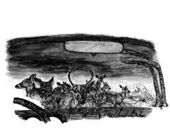 """Hurricane Deer"" by David Hazouri"