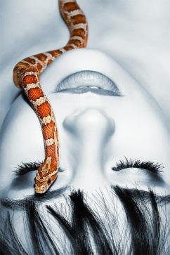 """Snake"" by  Eugene Buzuk; for more information, visit http://eugenebuzuk.deviantart.com/"