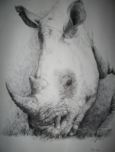 Rhino Ballpoint by Joey B; for more information, visit   http://joey-b.deviantart.com/