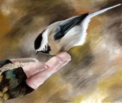 Chickadee-dee-dee by C. Latrans Lycaon; for more information, visit  http://feracoyote.deviantart.com/