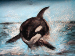 Killer Whale by  Rudhthoronwen; for more information, visit  http://rudhthoronwen.deviantart.com/